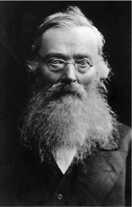 Известный русский историк Н. И. Костомаров