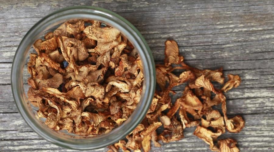 Продукт собирательства — грибы был надежным источником белка даже в годы неурожая на Руси