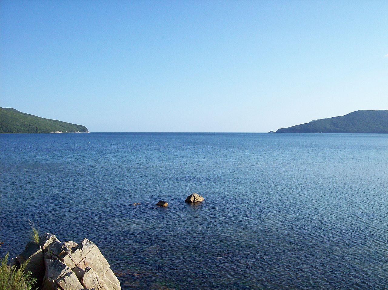 Залив святой Ольги