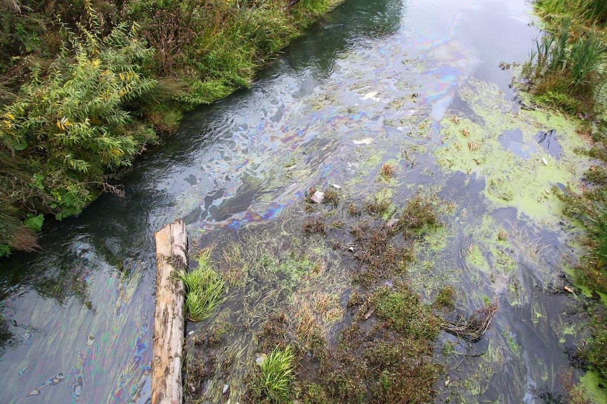 Обь признана самой грязной рекой России второй год подряд
